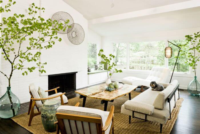 sala mid century modern con plantas