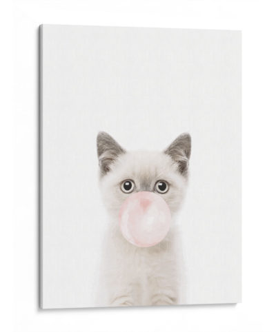 Cat-Bubble-gum-Canvas